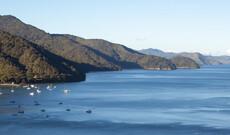 Mit dem Postboot durch den Queen Charlotte Sound