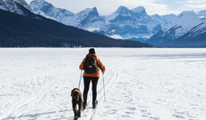 Winterwunderland in Kanada inkl. Flug