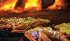 Kulinarisches Tasmanien