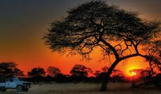 Botswana Kombinationen mit Desert & Delta Safaris