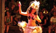 Rarotonga Nightlife Tour