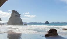 Hotspots der Nordinsel