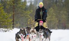 Husky-Abenteuer in Lappland
