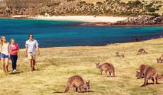 Australiens bezaubernde Küstenrouten
