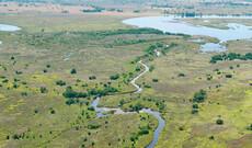 Linyanti, Delta & Wüste