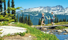 Transfers in Whistler