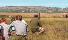 Südafrika: Eco Ranger Experience