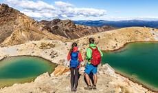 Neuseelands Natur hautnah erleben