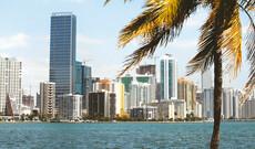 Transfers in Miami