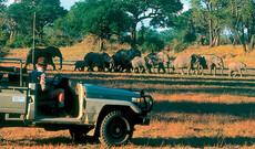 Naturparadiese Malawi & Sambia