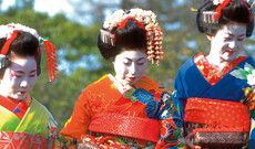 Geisha Tour