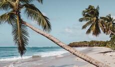 Auszeit auf Martinique