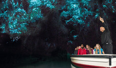 Faszinierende Glühwürmchenhöhlen