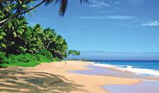 Flugtransfers auf Sri Lanka