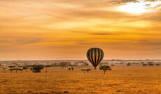 Serengeti Ballon Safari