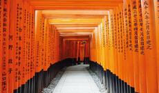 Japan zum Kennenlernen