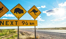 Australiens Nullarbor Ebene entdecken