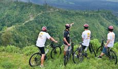 Bali Aktiv