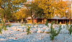 Halali Rest Camp