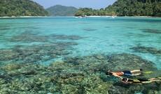 Schnorcheln in den Surin Inseln